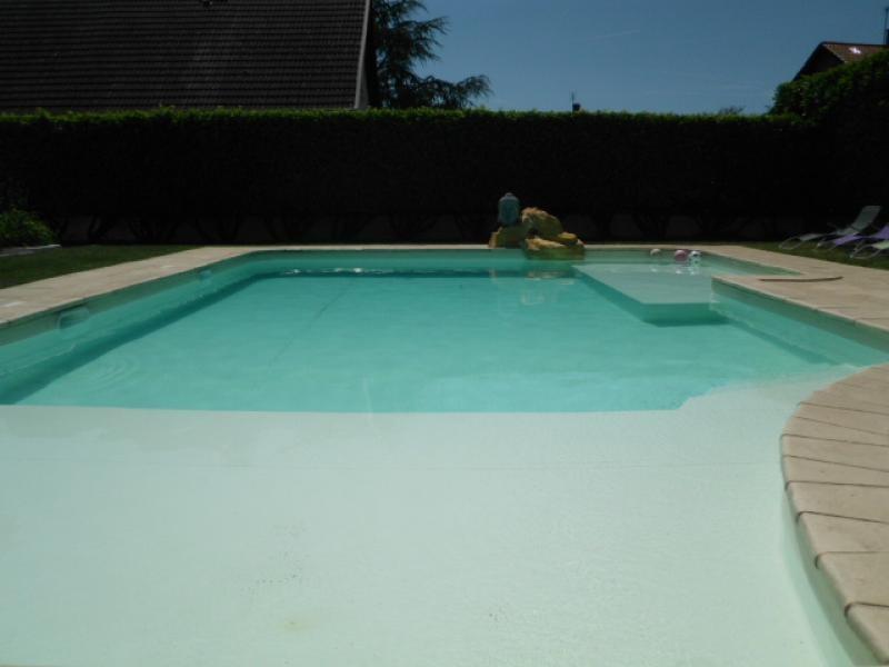 Deluxe sale house / villa Chavanoz 470000€ - Picture 6