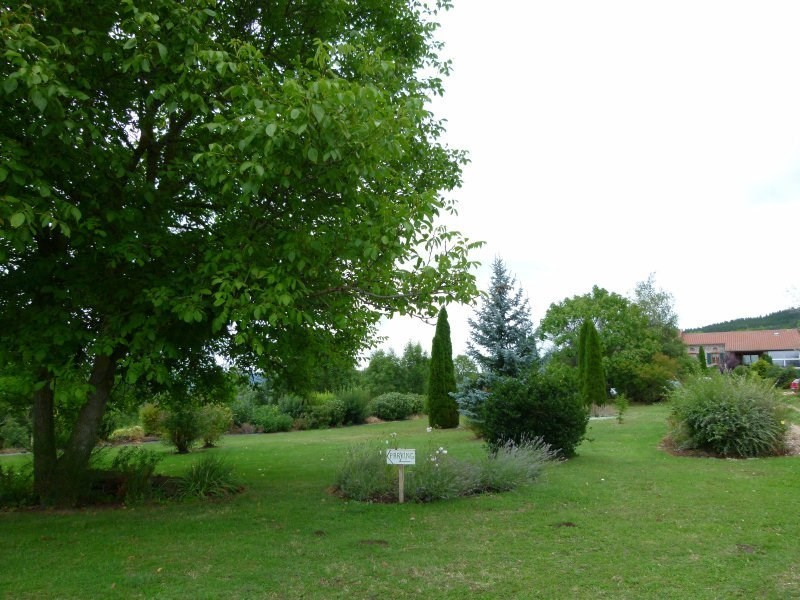 Investment property house / villa Siaugues ste marie 388500€ - Picture 22