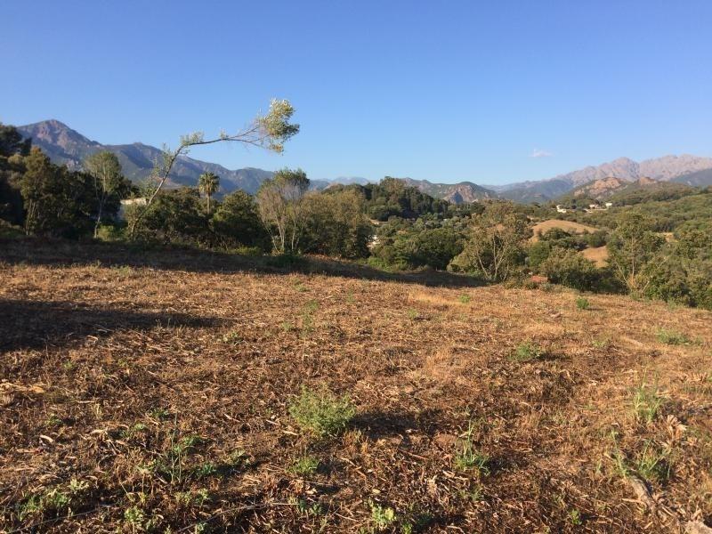 Vente terrain Cauro 140000€ - Photo 1