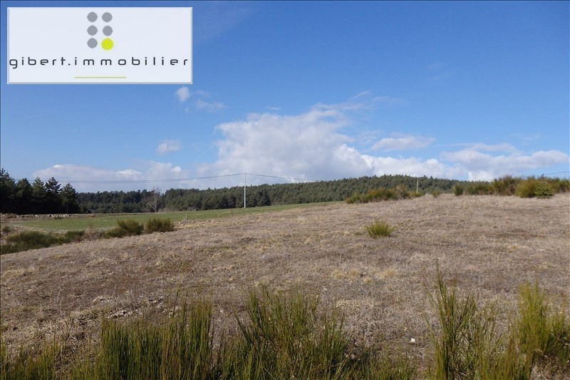 Sale site Chaspinhac 41600€ - Picture 2