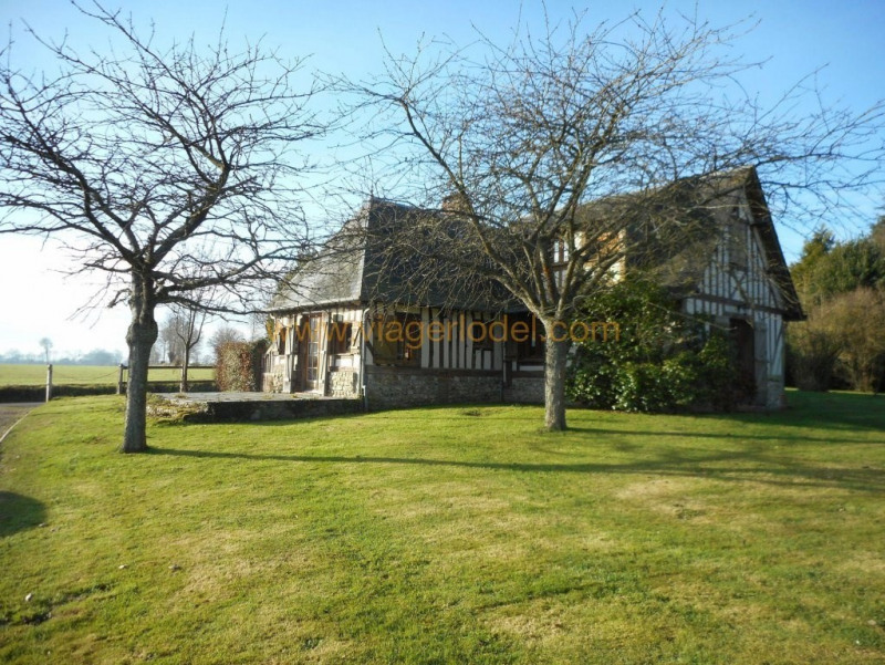 Life annuity house / villa Martainville 190800€ - Picture 3