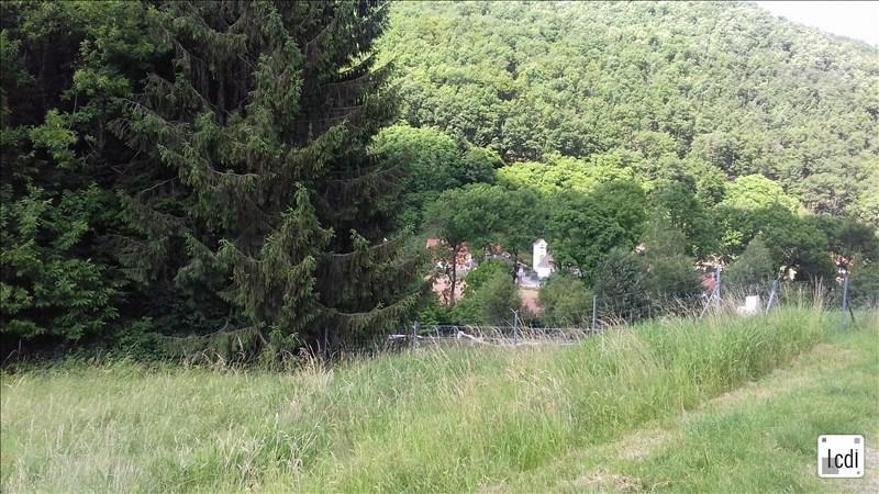 Vente terrain Sainte-marie-aux-mines 65500€ - Photo 3
