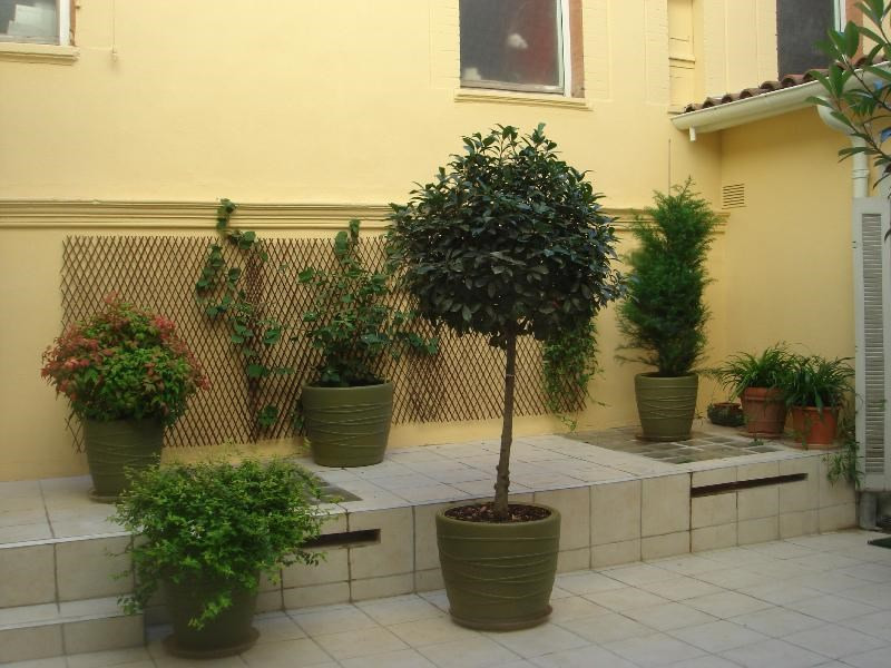 Rental apartment Toulouse 2550€ CC - Picture 2