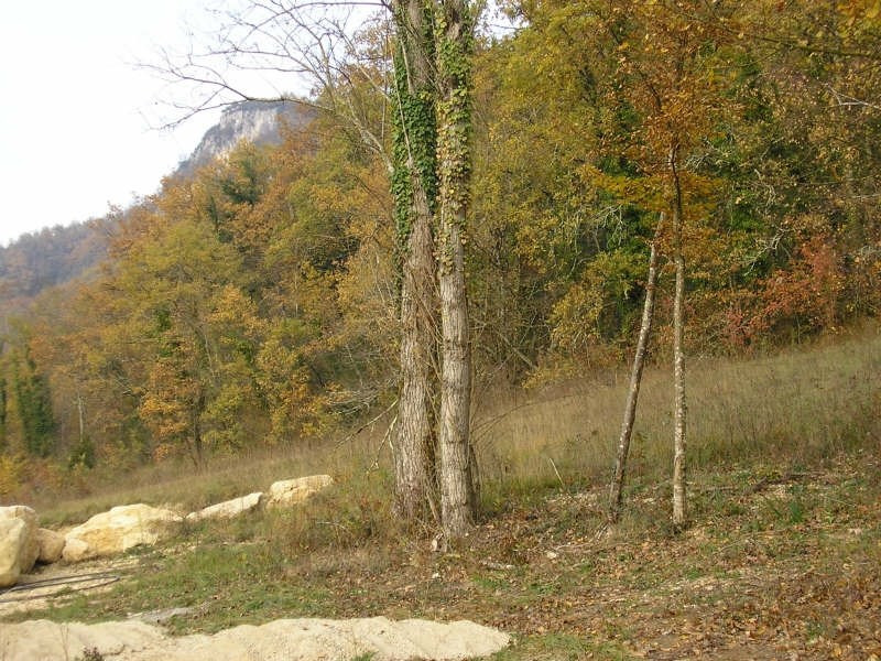 Vente terrain Bregnier - cordon 50 000€ - Photo 2