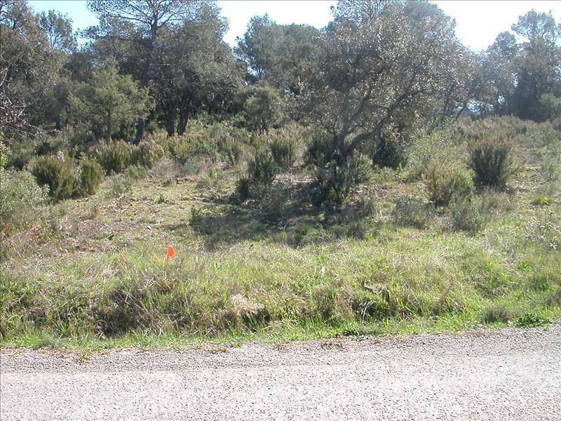 Vente terrain Le cannet des maures 141000€ - Photo 2