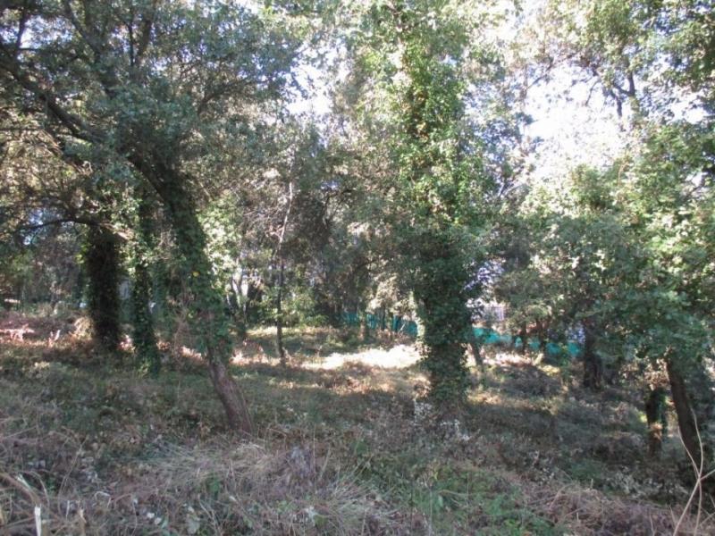 Terrain  de 1200 m² Flassans-sur-Issole par LES MAISONS DE MANON BRIGNOLES