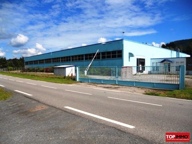 Vente local commercial Celles sur plaine 297000€ - Photo 1