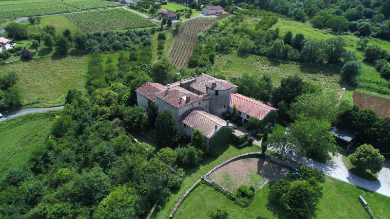 Vente de prestige château Marcilly d azergues 2 300 000€ - Photo 1
