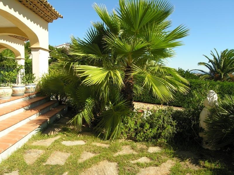 Life annuity house / villa Les issambres 800 000€ - Picture 5