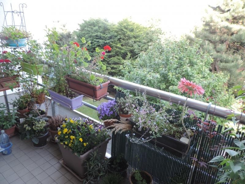 Vente appartement Chatenay malabry 419000€ - Photo 3