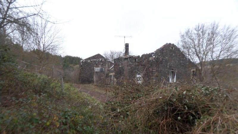 Vente maison / villa Le brignon 35000€ - Photo 4