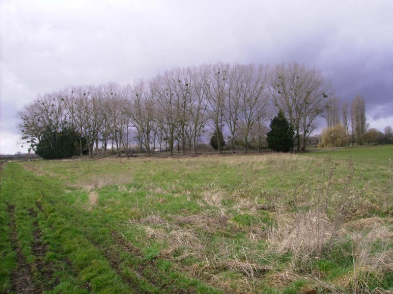 Verkoop  stukken grond Magny cours 110000€ - Foto 3