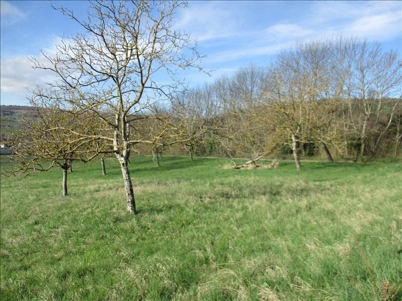 Vente terrain Dionay 78000€ - Photo 2
