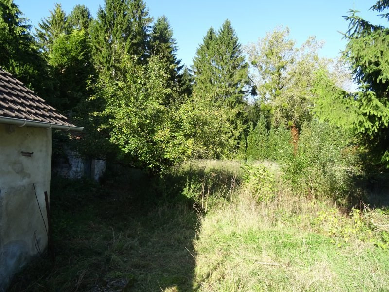 Vente maison / villa Villers cotterets 71 000€ - Photo 6