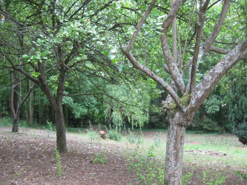 Vente terrain Beauvais 127000€ - Photo 1