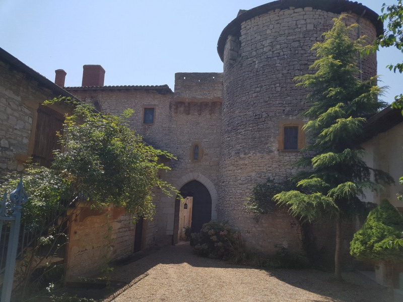 Deluxe sale house / villa Civrieux d azergues 2300000€ - Picture 13