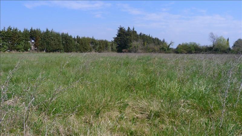 Verkoop  stukken grond Loriol du comtat 89900€ - Foto 1