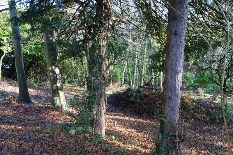 Vente terrain Parmain 170000€ - Photo 2