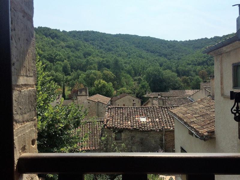 Vente maison / villa Bruniquel 151000€ - Photo 7