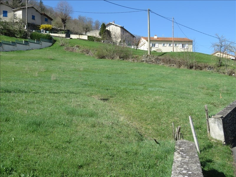 Sale site Brives charensac 80 000€ - Picture 4