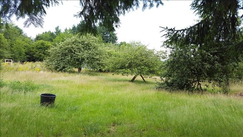 Vendita terreno Lutzelhouse 299000€ - Fotografia 2