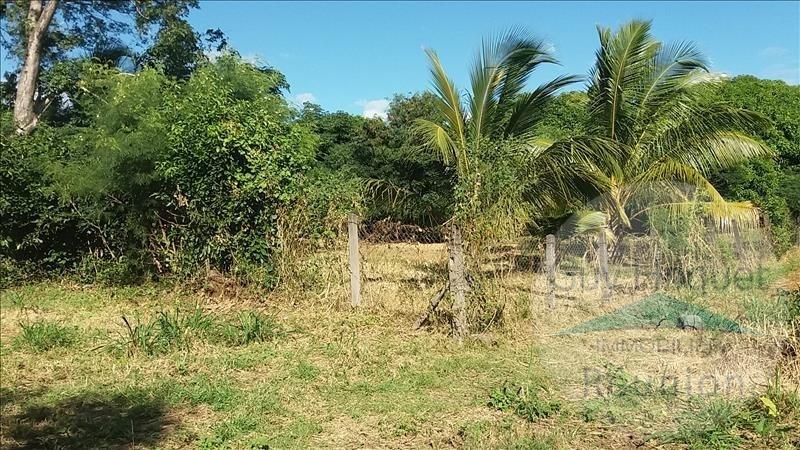 Vendita terreno Ste marie 264600€ - Fotografia 2