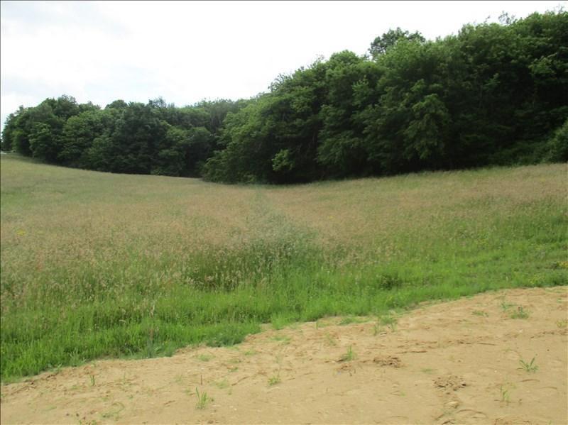Vente terrain Varacieux 73000€ - Photo 3