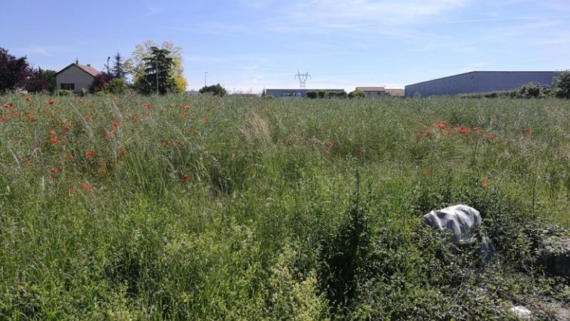 Sale site Villette d anthon 290000€ - Picture 2