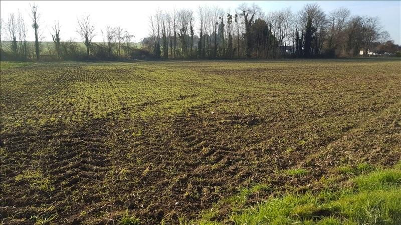 Sale site Montereau fault yonne 103550€ - Picture 1