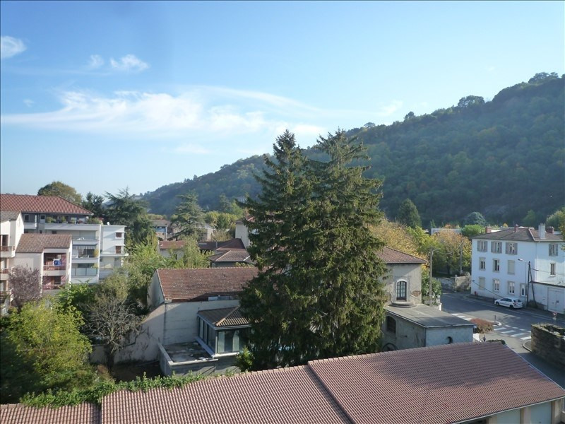 Verkoop  appartement Vienne 116000€ - Foto 6