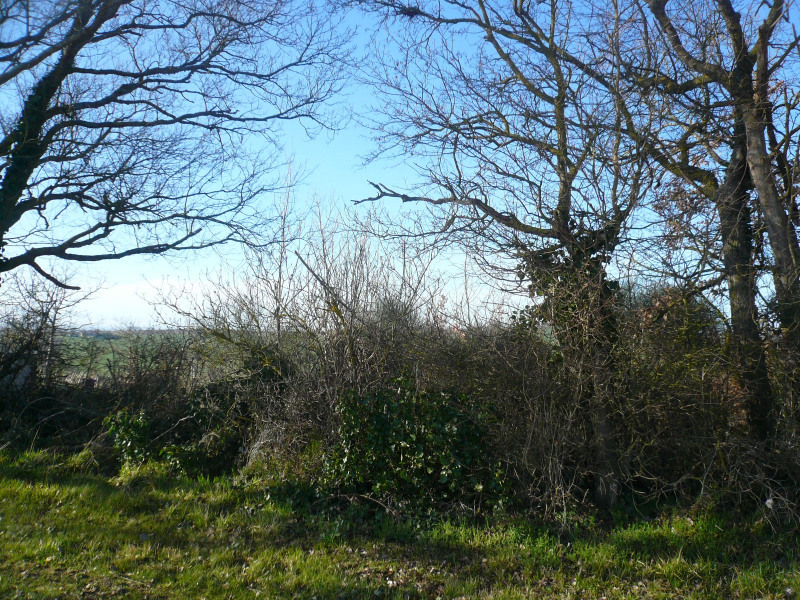Vente terrain L'isle jourdain sud ouest 10 min 80 257€ - Photo 2