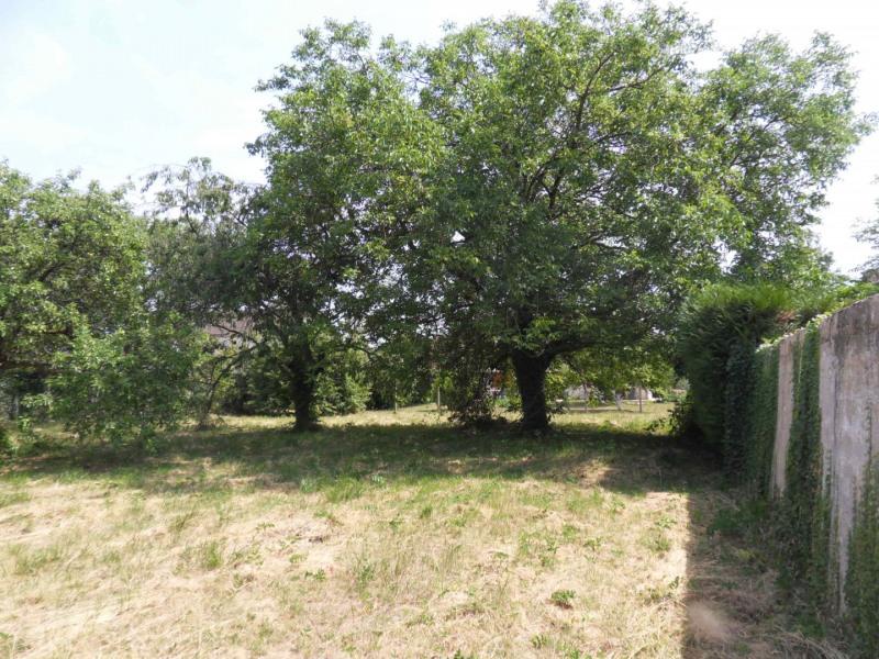 Vente terrain Montigny-sur-loing 137800€ - Photo 5