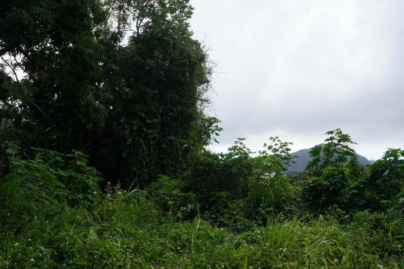 Vente terrain St claude 139084€ - Photo 1
