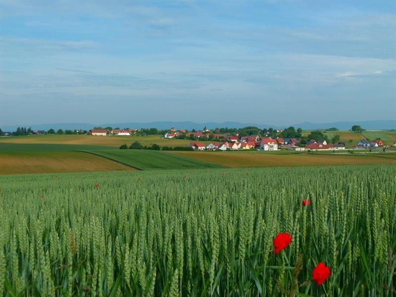 Terrain constructible Oberlauterbach
