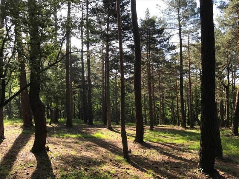 Vente terrain Payrin augmontel 59000€ - Photo 1