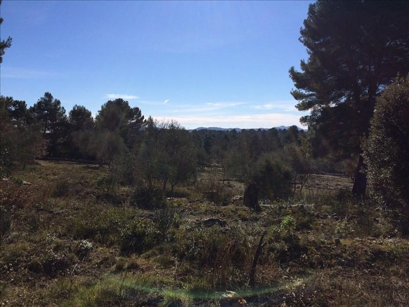 Vente terrain Saint cezaire sur siagne 110000€ - Photo 4