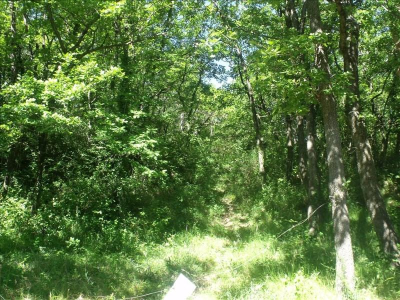 Vente terrain Soubes 165000€ - Photo 3