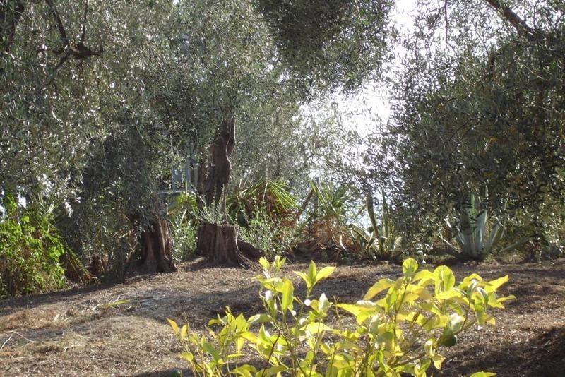 Vendita terreno L'abadie 318000€ - Fotografia 8