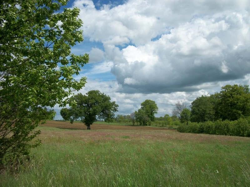 Vente terrain Nexon 33000€ - Photo 1