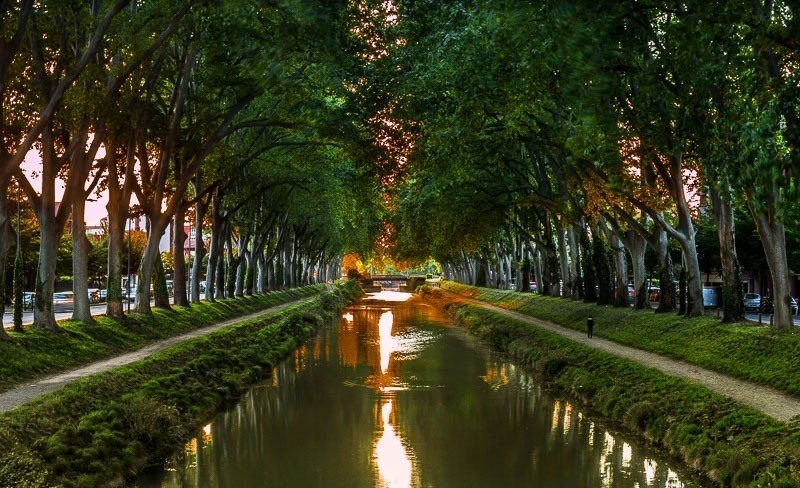 Location appartement Toulouse 625€ CC - Photo 1