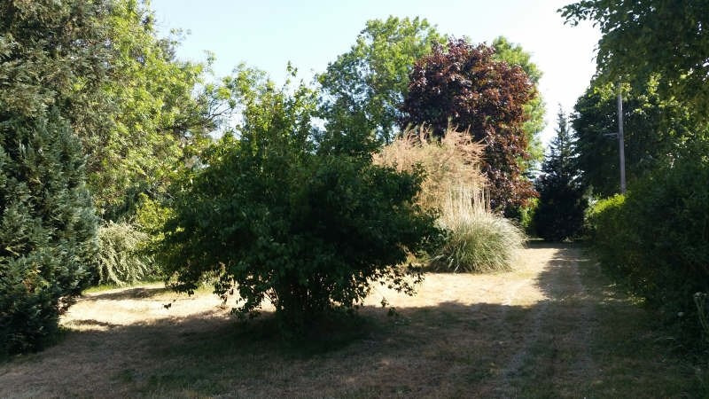 Vente maison / villa Vannes sur cosson 157500€ - Photo 3