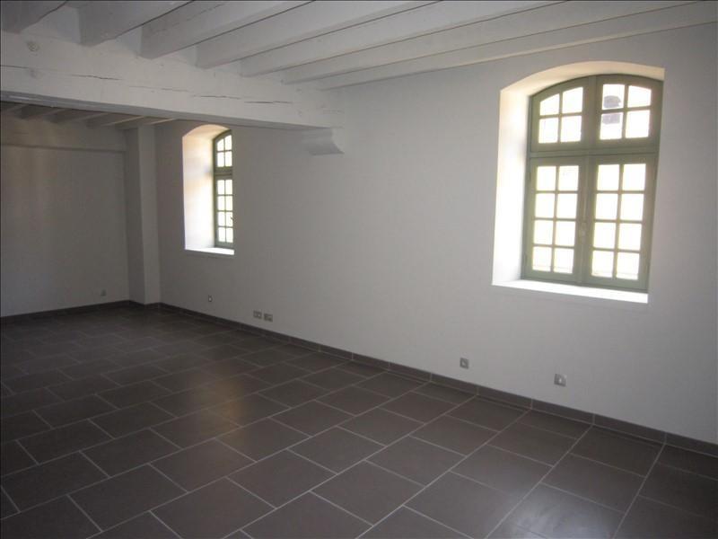 Rental apartment St cyprien 501€ CC - Picture 1