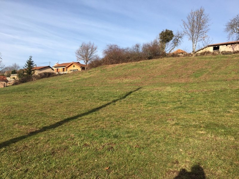 Vente terrain Renaison 75900€ - Photo 3