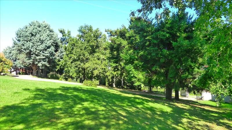 Vendita terreno Ambierle 67000€ - Fotografia 2