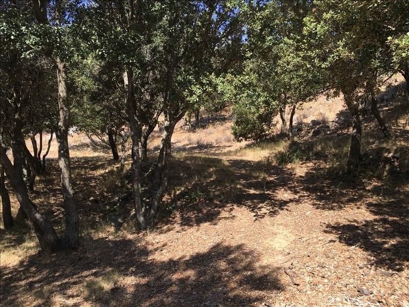 Vente terrain Monticello 265000€ - Photo 4