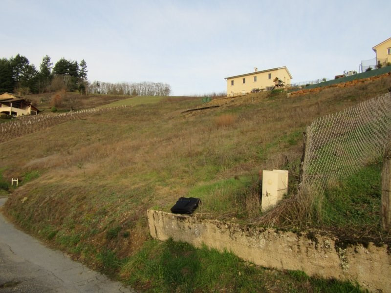 Sale site Chamelet 79 500€ - Picture 5
