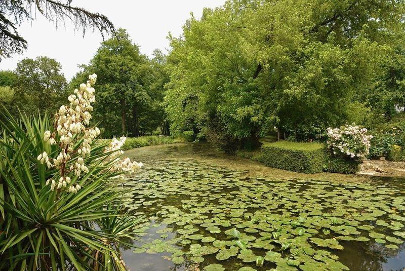 Vente de prestige maison / villa Tours 649900€ - Photo 13
