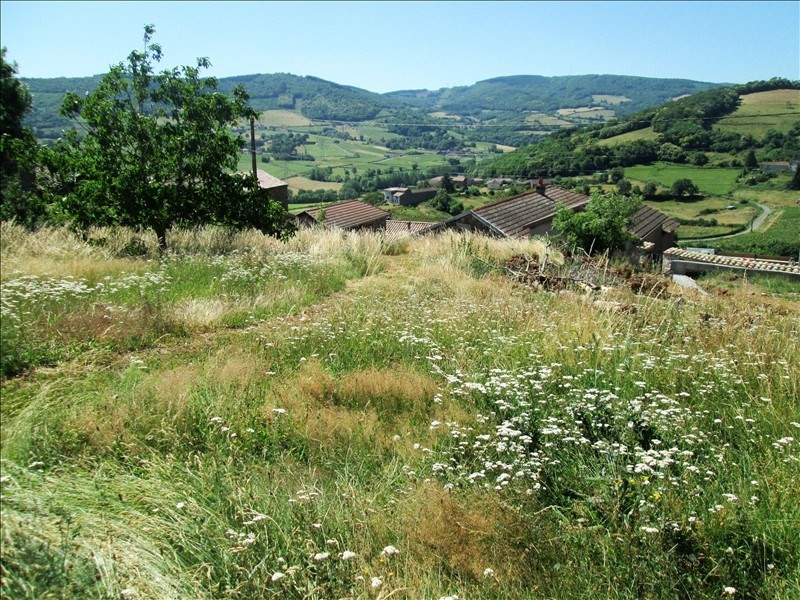 Vente terrain Pierreclos 65000€ - Photo 2