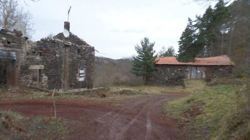 Vente maison / villa Le brignon 35000€ - Photo 5