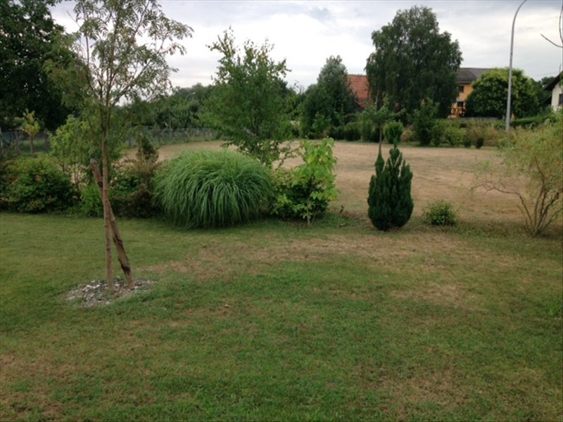 Vente terrain Biesheim 66000€ - Photo 2